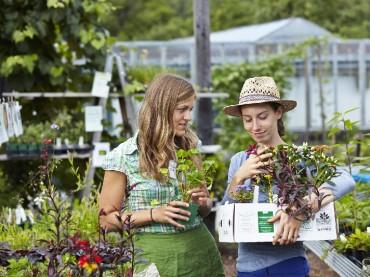 ARCHE NOAH Pflanzenmärkte 2014