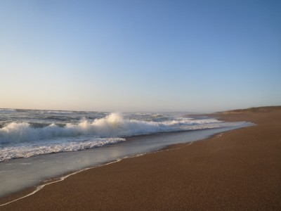 15 point reyes sea 1 (2)