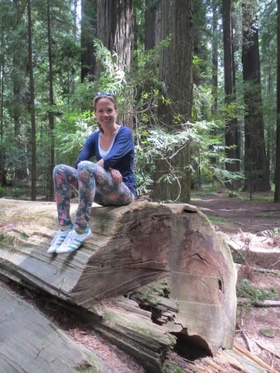 27 eureka redwood