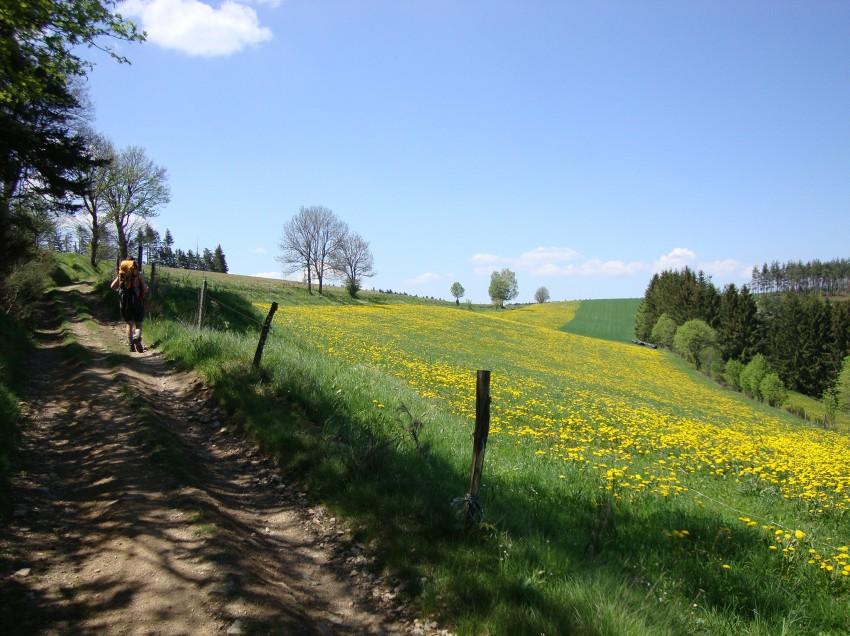 Wieder auf dem Jakobsweg: Von Genf nach Cahor
