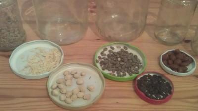 Saatgut und Zucht