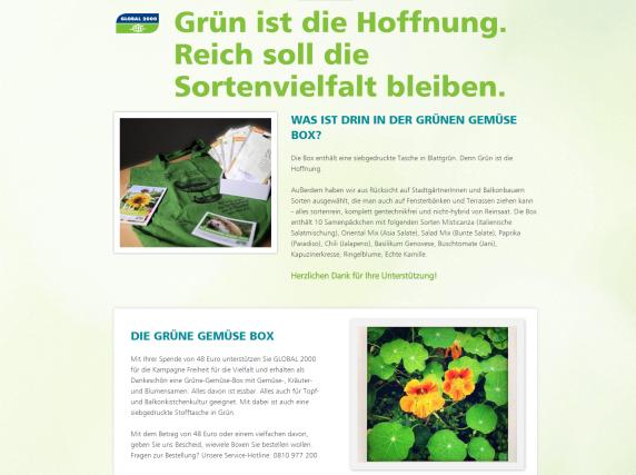 Schenke Vielfalt – Grüne Gemüse Box als Weihnachtsgeschenk