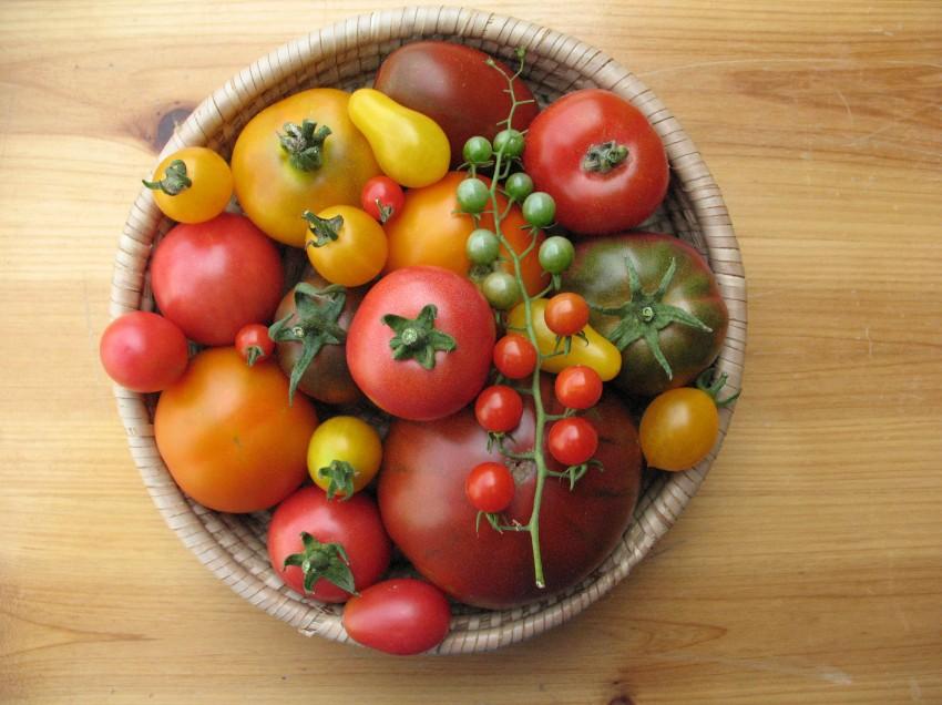 Petitionen wirken! Saatgutverordnung endlich ad acta gelegt