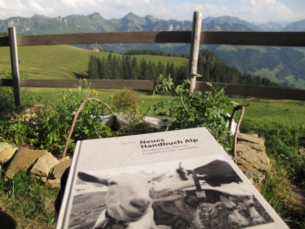 Pflichtlektüre für die Alp. Foto: Doris