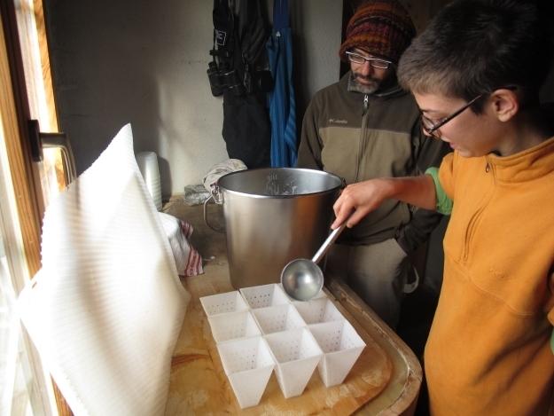 Normalerweise lernt Chiara unter Giambas Aufsicht in diesen Tagen, Käse zu machen. Heute nicht. Foto: Doris