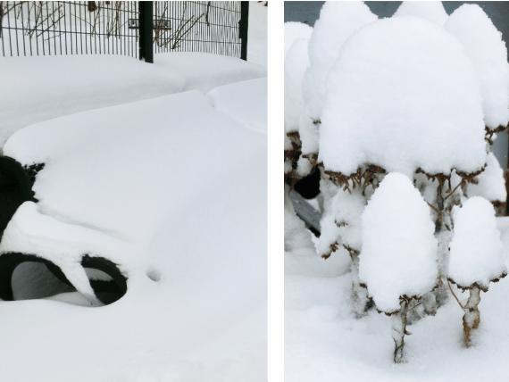 kanada-im-schnee