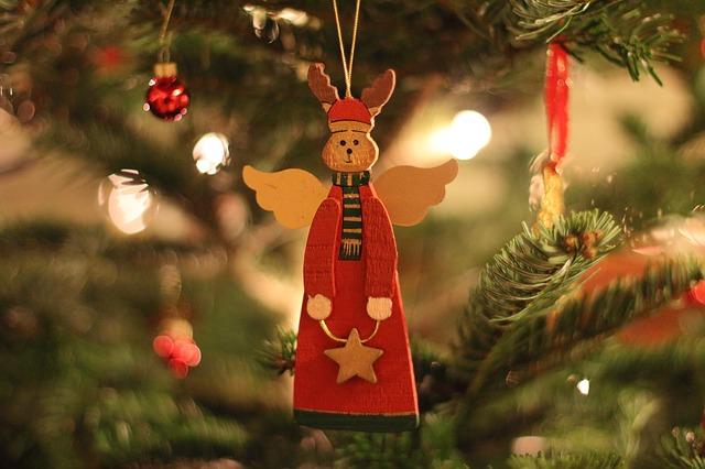 Leasing Weihnachtsbaum.Lebender Weihnachtsbaum Mit Liefer Und Abholservice The Bird S