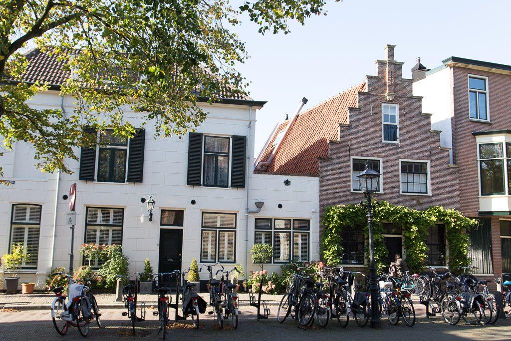 Haarlem, das kleine Amsterdam. Foto ©wingsaregolden.com